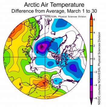 Figure 2b. This plot shows the departure from average air temperature in the Arctic at the 925 hPa level, in degrees Celsius, for March 1 to 30, 2020. Yellows and reds indicate higher than average temperatures; blues and purples indicate lower than average temperatures.||Credit: NSIDC courtesy NOAA Earth System Research Laboratory Physical Sciences Division| High-resolution image