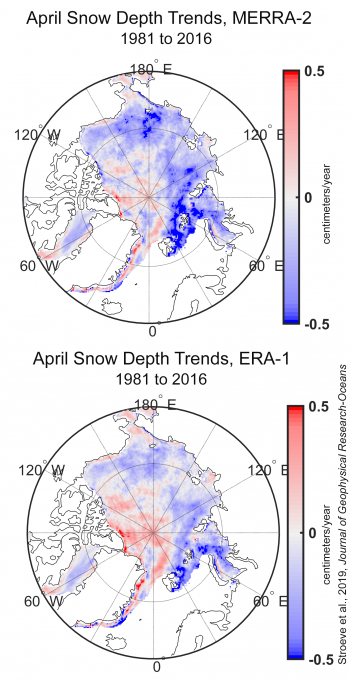 Figure 5b. The top map of the Arctic shows April trends in snow depth (in centimeters/year) from 1981 to 2016 based on NASA Modern-Era Retrospective analysis for Research and Applications-2 (MERRA-2). The bottom map of the Arctic shows April trends in snow depth (in centimeters/year) from 1981 to 2016 based on the European Centre for Medium-Range Weather Forecasts (ECMWF) ERA-Interim (ERA-I). The total volume of accumulation is measured from August through July, starting in the 1980 to 1981 winter. ||Credit: Stroeve et al., 2019 Journal of Geophysical Research-Oceans| High-resolution image