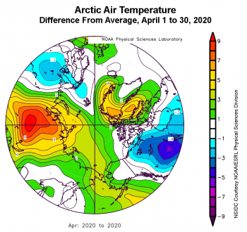 Figure 2b. This plot shows the departure from average air temperature in the Arctic at the 925 hPa level, in degrees Celsius, for April 1 to 30, 2020. Yellows and reds indicate higher than average temperatures; blues and purples indicate lower than average temperatures. ||Credit: NSIDC courtesy NOAA Earth System Research Laboratory Physical Sciences Division |High-resolution image