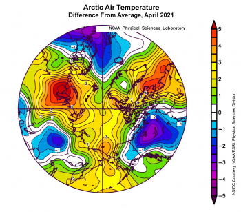 Figure 2d. This plot shows the departure from average air temperature in the Arctic at the 925 hPa level, in degrees Celsius, for April 2021. Yellows and reds indicate higher than average temperatures; blues and purples indicate lower than average temperatures. ||Credit: NSIDC courtesy NOAA Earth System Research Laboratory Physical Sciences Division|High-resolution image
