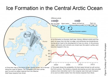 Figure 5. This figure shows three different aspects of ice formation in the Arctic Ocean. |Figure 5a. This map shows the Transpolar Drift and pack ice carried from the Siberian shelf seas towards Fram Strait.|Figure 5b. This illustration shows the process of ice formation. |Figure 5c. This graph shows the probability that newly formed ice in the winter will survive the summer. ||Credit: T. Krumpen|High-resolution image