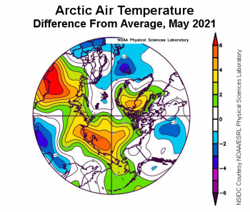 Figure 2e. This plot shows the departure from average air temperature in the Arctic at the 925 hPa level, in degrees Celsius, for May 2021. Yellows and reds indicate higher than average temperatures; blues and purples indicate lower than average temperatures. ||Credit: NSIDC courtesy NOAA Earth System Research Laboratory Physical Sciences Laboratory|High-resolution image