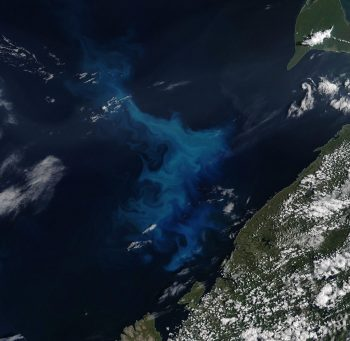 Figure 6. This image shows a phytoplankton bloom in the Barents Sea on July 26, 2020, from a Moderate Resolution Imaging Spectroradiometer (MODIS) True Color composite in NASA Worldview. The phytoplankton show up in the visible imagery as a light blue and teal swirling pattern against the dark blue ocean. The northern part of the Finnoscandian peninsula is in the lower right corner. ||Credit: NASA Worldview|High-resolution image