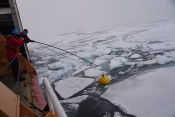 Figure 5. In this image, a Coast Guard Cutter HEALY crewmember prepares to retrieve an oceanographic research mooring in the Chukchi Sea on August 2, 2021. ||Credit: Janessa Warschkow, U.S. Coast Guard| High-resolution image