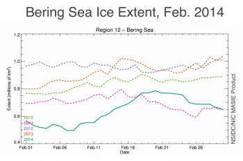 Figure 4b. Bering Sea ice extent during February from the NSIDC Multisensor Analyzed Sea Ice Extent (MASIE) for the years 2010 through 2014. MASIE is produced daily by the U.S. National Ice Center based on human analysis of a variety of available satellite imagery.||Credit: National Snow and Ice Data Center and the National Ice Center|  High-resolution image