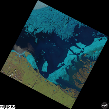 Landsat sea ice image