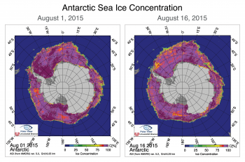 Figure 5b. The above images compare Antarctic sea ice concentration for August 1, 2015 and August 16, 2015. Data are from the Advanced Microwave Scanning Radiometer 2 (AMSR2) sensor on the Global Change Observation Mission 1st - Water (GCOM-W1) satellite.||Credit: Institute of Environmental Physics, University of Bremen| High-resolution image
