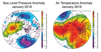 Figure 2b. These graphs show average sea level pressure and air temperature anomalies at 925 millibars (about 3,000 feet above sea level) for January 2016. normal.||Credit: National Snow and Ice Data Center, courtesy NOAA Earth System Research Laboratory Physical Sciences Division| High-resolution image