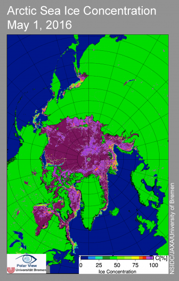 sea ice concentration map