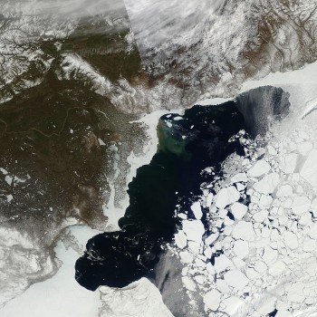 Figure 5. The image above shows a May 21 view of Arctic sea ice in the Beaufort Sea from the Moderate Resolution Imaging Spectroradiometer (MODIS) sensor. |
