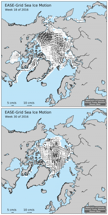 Figure 5a. These graphs Arctic sea ice motion for May 2 to 8, 2016 (top) and July 25 to 31, 2016 (bottom).