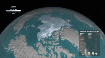 sea ice age still image