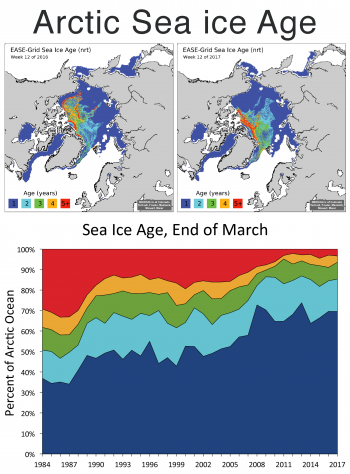 Figure 5. These maps shows 2016 (top left) and 2017 (top right) Arctic sea ice age for the end of March and the time series of percent coverage for the Arctic Ocean (bottom).