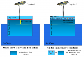 Figure 4. This schematic illustrates how salinity shifts the source of the radar signature in the icepack.