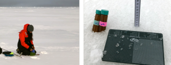Figure 6c. NSIDC researcher Alia Khan collects snow samples for black carbon analysis, snow grain size, and snow depth. These measurements were collected in conjunction with spectral albedo measurements.