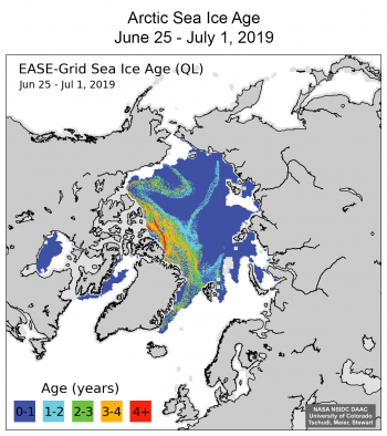 "Figure 5. Sea ice age for (a) January 1-7, 2019 and (b) June 25 - July 1, 2019. The short tongue of ice in the eastern Beaufort Sea in January has been stretched and deformed into the ""Z"" shaped feature seen in the late June image. NSIDC DAAC Quicklook data.