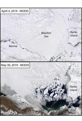 Figure 6a. MODIS Imagery over the Beaufort Sea from April 4 and May 30, 2019. Showing the transition from an ice-covered Sea to the vast areas of open water that were dynamically created. ||Credit: NASA Worldview|High-resolution image