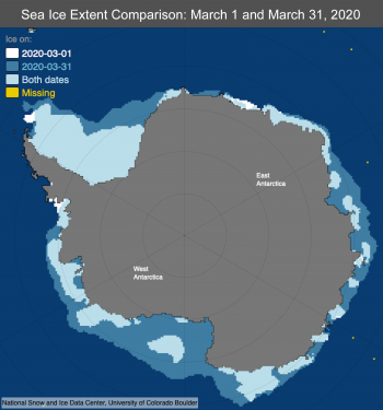 Figure 7: This map compares sea ice extent in Antarctica on March 1 and March 31, 2020. ||Credit: National Snow and Ice Data Center | High-resolution image