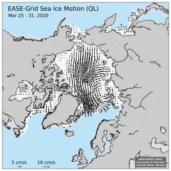Figure 7. This figure shows ice motion from March 25 to March 31, 2020, revealing a strong Transpolar Drift and ice export towards Svalbard and out of Fram Strait.||Credit: NSIDC| |High-resolution image