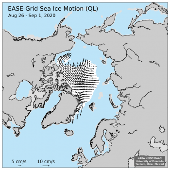 Figure 3a. This figure shows sea ice motion determined from National Snow and Ice Data Center EASE-Grid passive microwave data from August 26, 2020, to September 1, 2020.||Credit: National Snow and Ice Data Center|High-resolution image