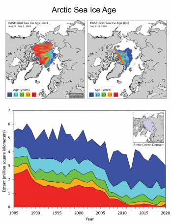Arctic sea ice age map at end of 2020 melt season