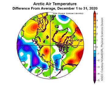 Figure 2b. This plot shows the departure from average air temperature in the Arctic at the 925 hPa level, in degrees Celsius, for December 2020. Yellows and reds indicate higher than average temperatures; blues and purples indicate lower than average temperatures. ||Credit: NSIDC courtesy NOAA Earth System Research Laboratory Physical Sciences Division|High-resolution image