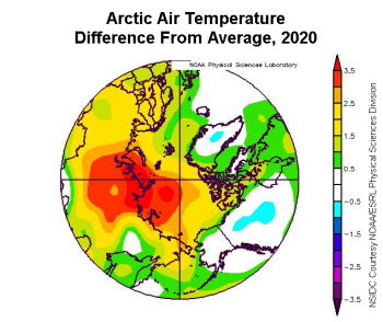 Figure 5a. This plot shows the departure from average air temperature in the Arctic at the 925 hPa level, in degrees Celsius, for the full calendar year 2020. Yellows and reds indicate higher than average temperatures; blues and purples indicate lower than average temperatures. ||Credit: NSIDC courtesy NOAA Earth System Research Laboratory Physical Sciences Division|High-resolution image