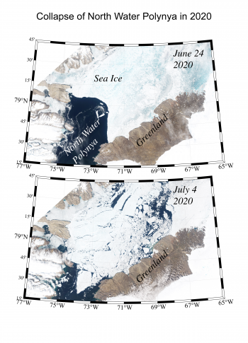 collapse of north water polynya in summer 2020