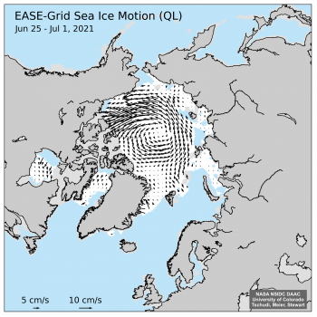 Figure 2c. This plot shows the direction of sea ice motion for the period between June 25 and July 1, 2021.||Credit: M. Tschudi, W. Meier, and Stewart, NASA NSIDC DAAC|High-resolution image