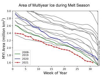 comparison of various melt years and multiyear ice area
