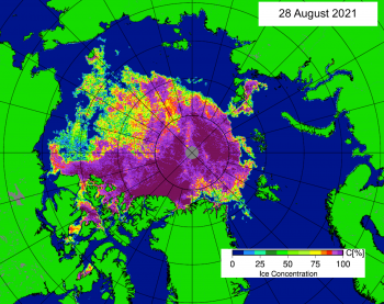 Figure 1b. This map shows Arctic sea ice concentration based on data from the Advanced Microwave Scanning Radiometer 2 (AMSR2) data as of August 28, 2021. Yellows indicate sea ice concentration of 75 percent, dark purples indicate sea ice concentration of 100 percent. ||Credit: University of Bremen|High-resolution image