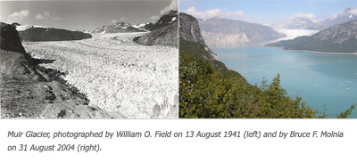 Glacier Photo Pairs