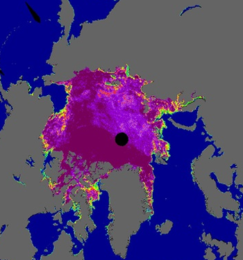 Still thumbnail of arctic sea ice concentration in false-color