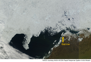 figure 5: modis image showing ice near barrow