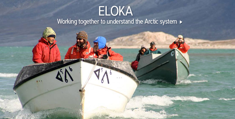ELOKA: Working together to understand the Arctic system.