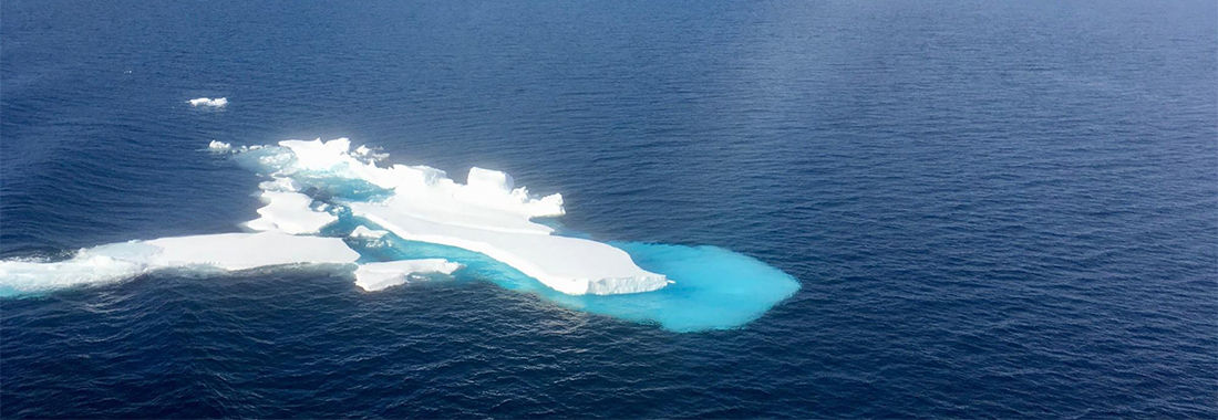 Sea ice remnant photo by J. Stroeve