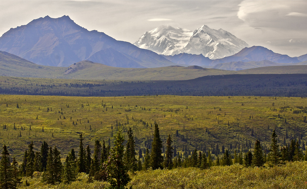 Photograph of a tundra landscape in Alaska