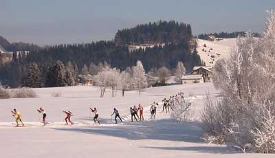 Cross country skiers in Einsiedeln, Switzerland