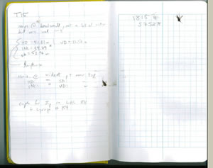 lab notebook with squished mosquitoes