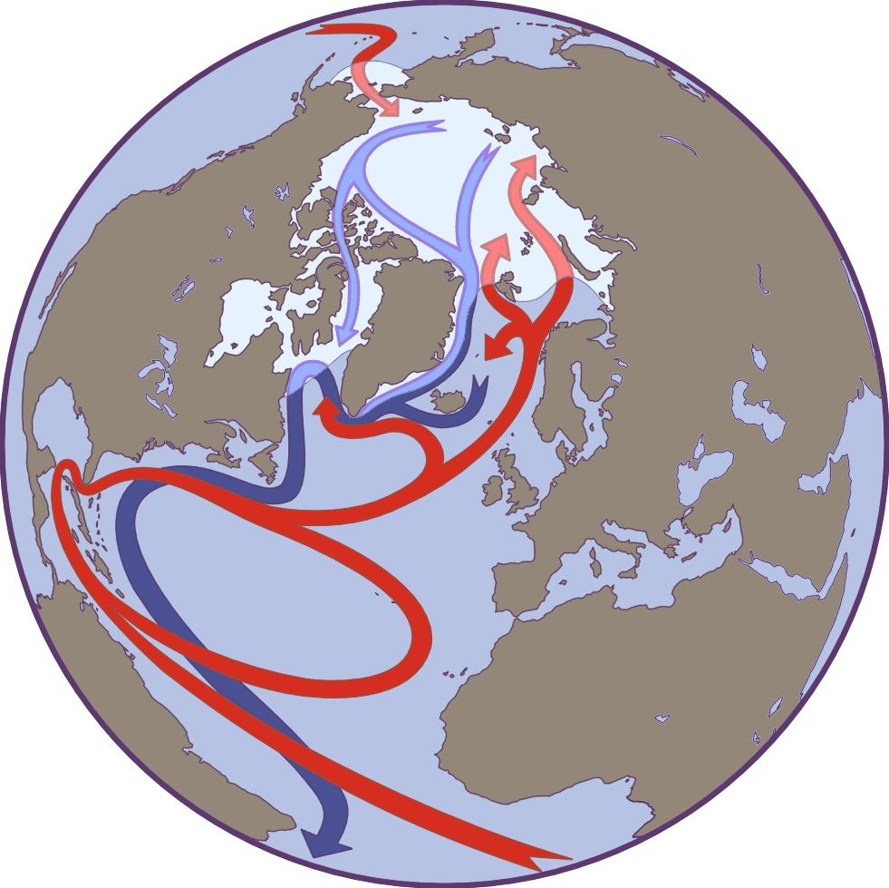 Atlantic And Arctic Ocean Circulation