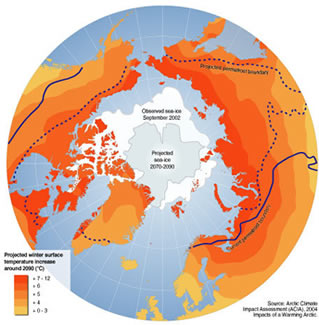 Global projection showing possible future movement of permafrost lines
