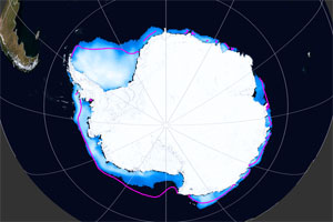 Antarctic animation preview