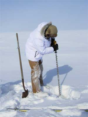 Scientist drills in the snow.