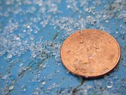 Sleet, or ice pellets, shown with a penny for scale