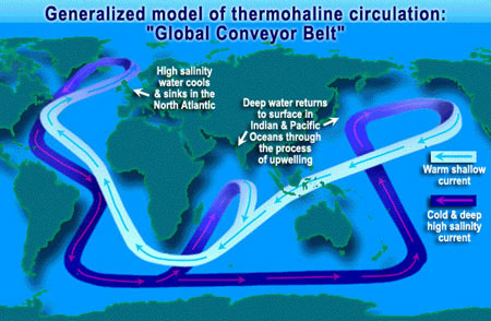 Diagram of thermohaline circulation