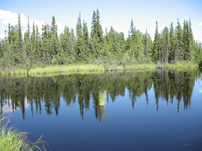 A thermokarst lake