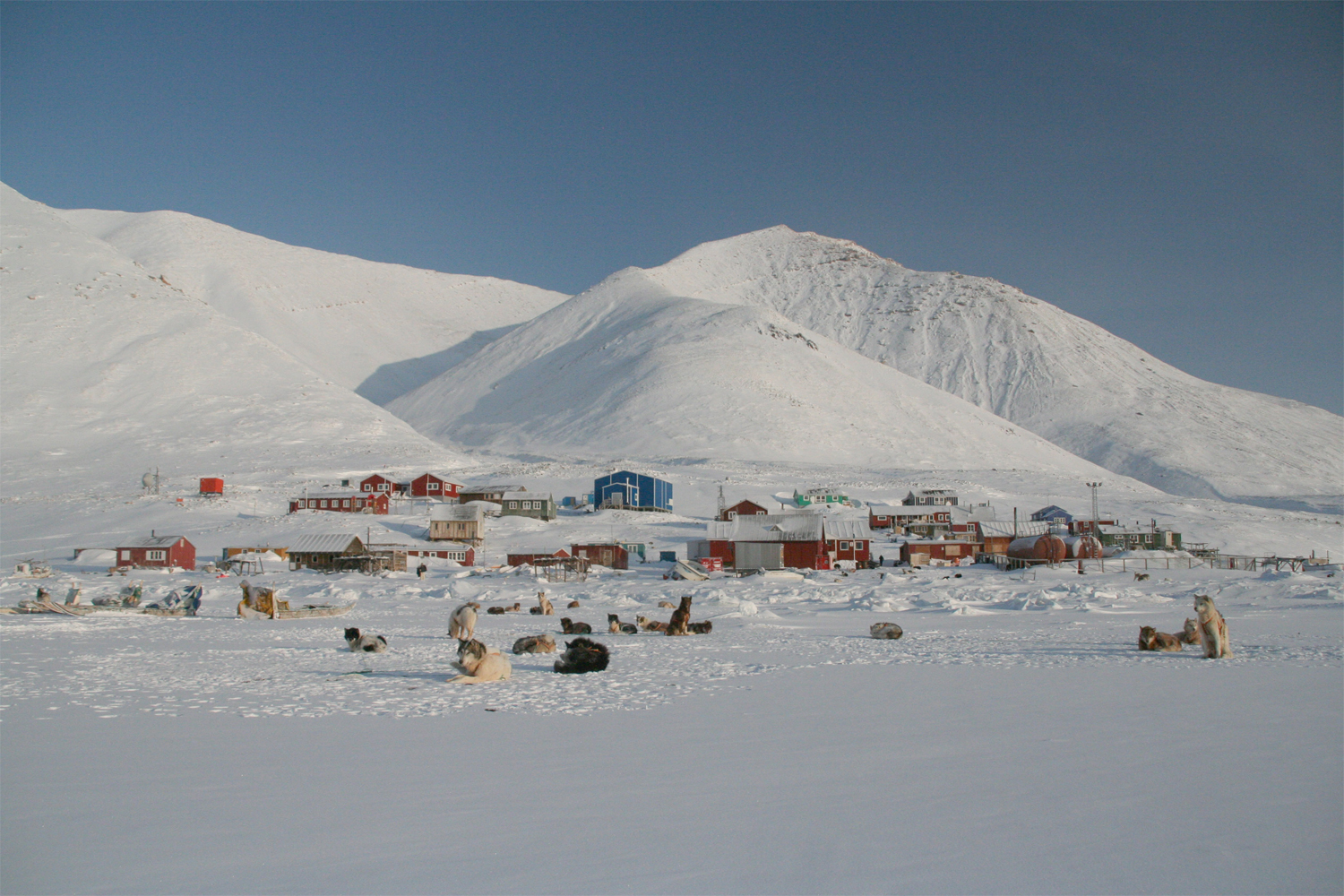 the arctic Ranging from 9 days to 24 days, we have the arctic expedition that is perfect for you.