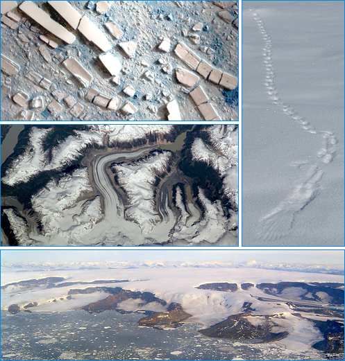 Collage of cryosphere images
