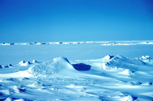 Picture of sea ice off Tigvarik Island in Beaufort Sea