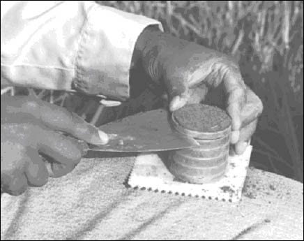 Photograph of researcher separating 1 cm sections of soil core